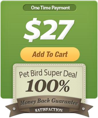 petbird-superdeal